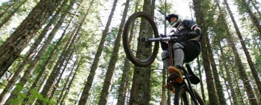 MTB guiden – er du nybegynder på mountainbike?